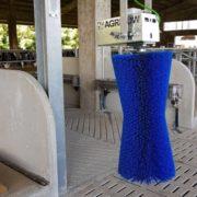 маятниковая щетка для коров синяя