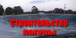Строительство лагуны