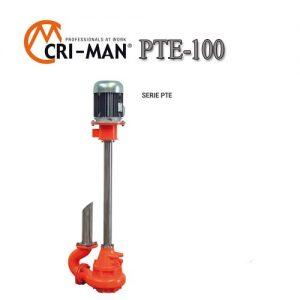 Вертикальный насос PTE 100