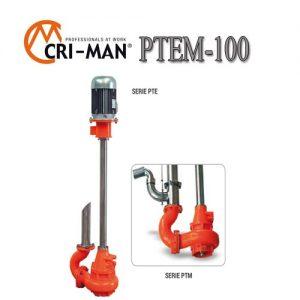Вертикальный насос PTEM 100